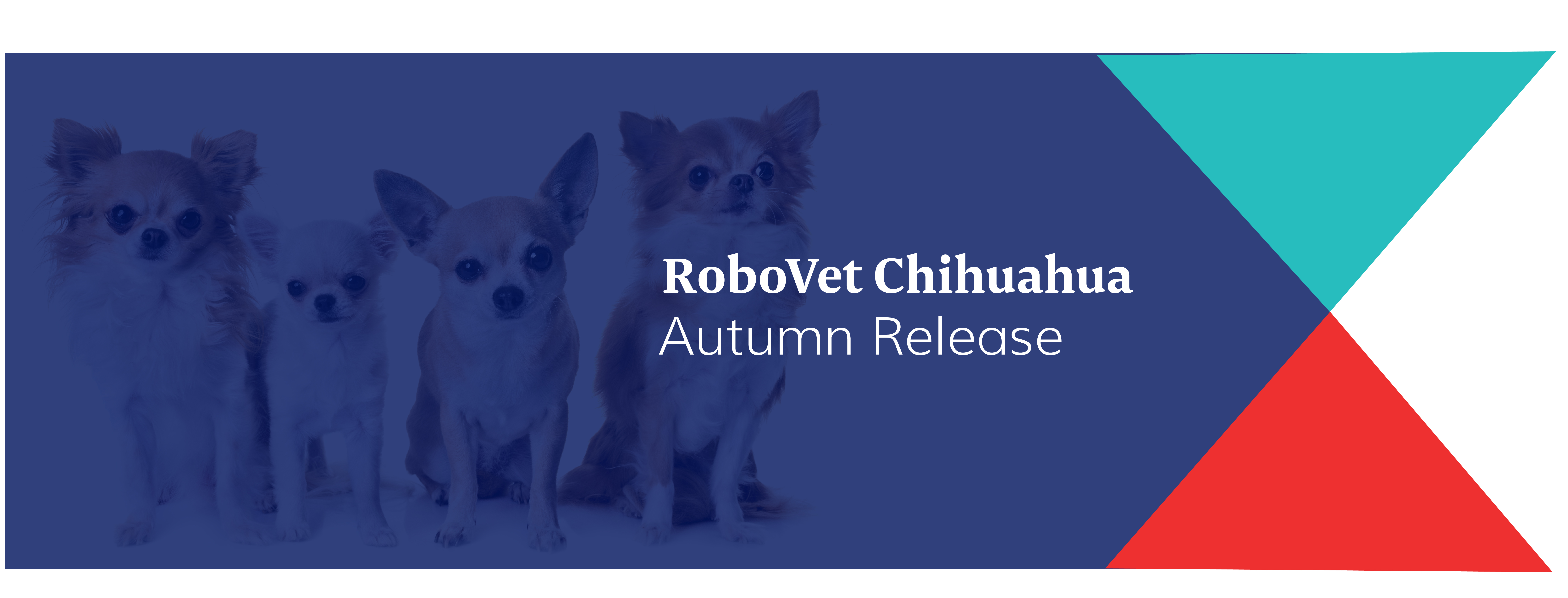 RoboVet Chihuahua Autumn Release 2019 is now available